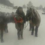 3 Schneefrauen