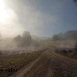 Stimmungsbild Nebel