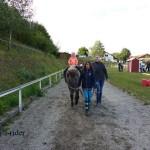 Hoffest (5)