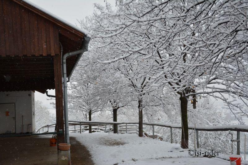 Schnee4
