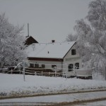 Schnee6