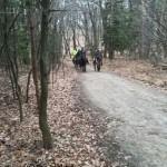 Versteckte Kamera im Wald