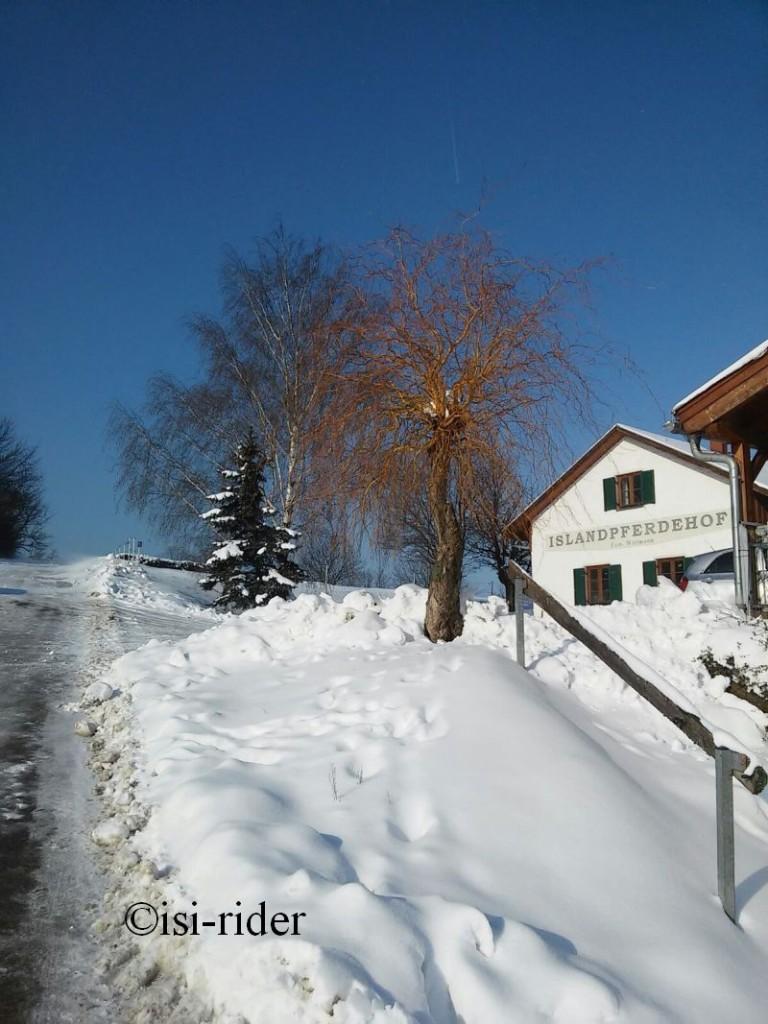 Schnee9