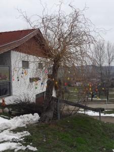 Osterbaum1